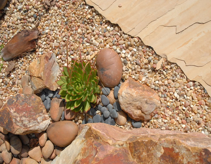 Parchment landscape pebble installed in front yard with boulder