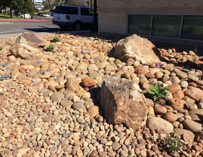 Mexican Sunburst landscape cobblestone pebble in front of commercial property