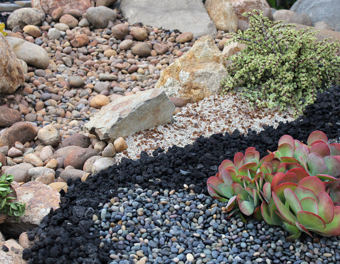 Black lava crushed stone rock in succulent garden yard