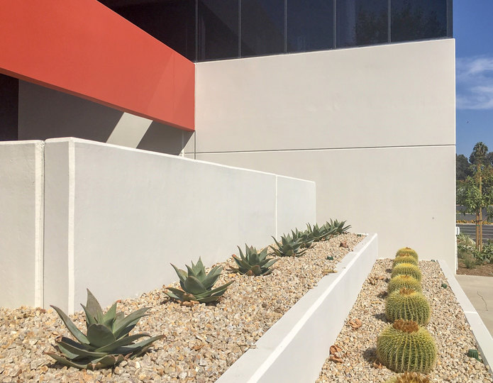 Apache Sunset crushed stone rock installed with cacti in front of commercial building