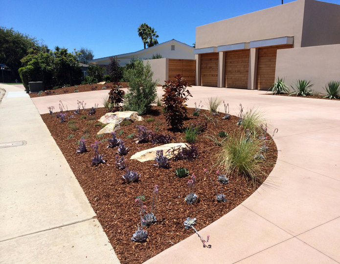 Montana Bark Nuggets landscape mulch groundcover in front yard with boulders and succulents
