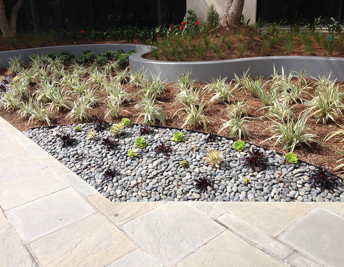 Mexican Beach Pebble black installed in front of commercial building