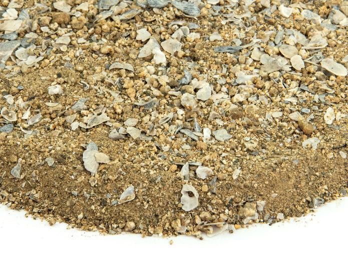 Gold Bocce Blend landscape groundcover closeup texture