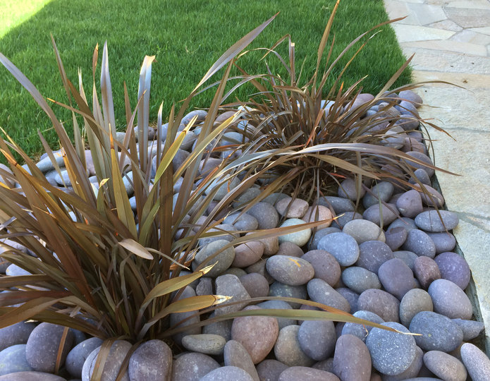 Roja Mexican Beach Pebble landscape cobblestone pebble installed in front yard garden