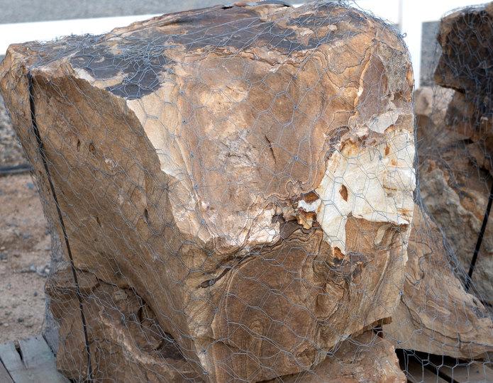 Wildhorse Swirl landscape boulder on pallet in rock yard 4