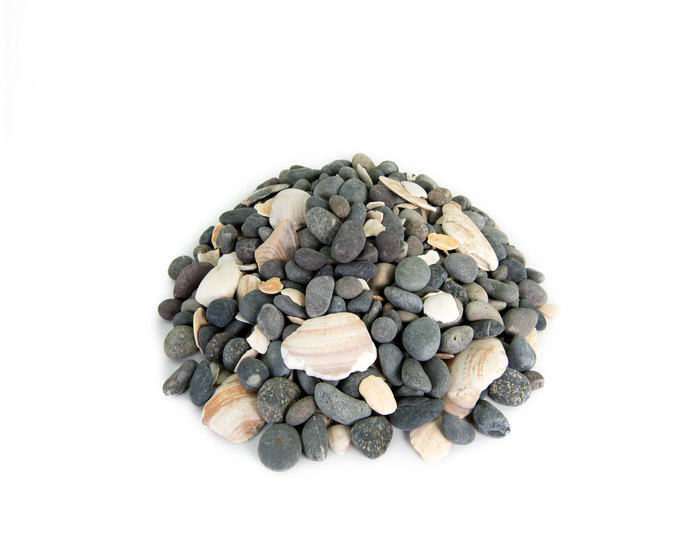 Mexican Beach Pebble with seashells landscape cobblestone pebble in bulk at rock yard