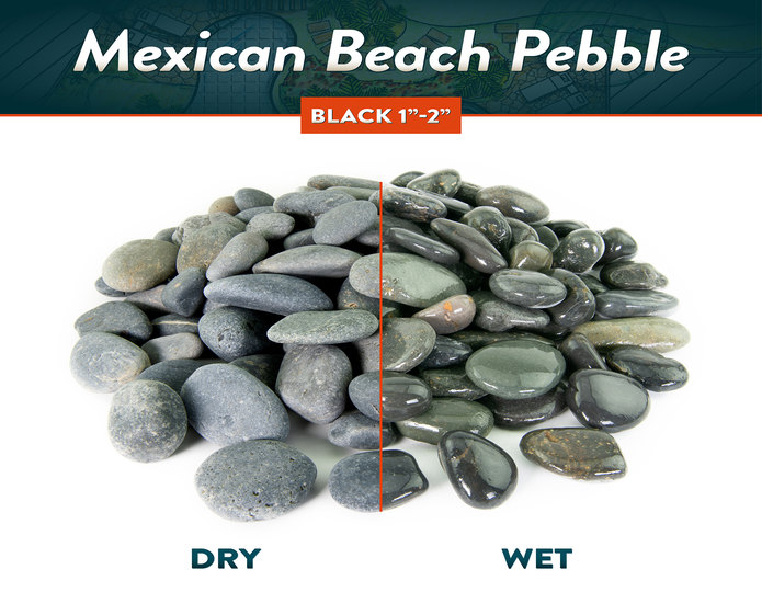 Mexican beach pebble back wet and dry comparison