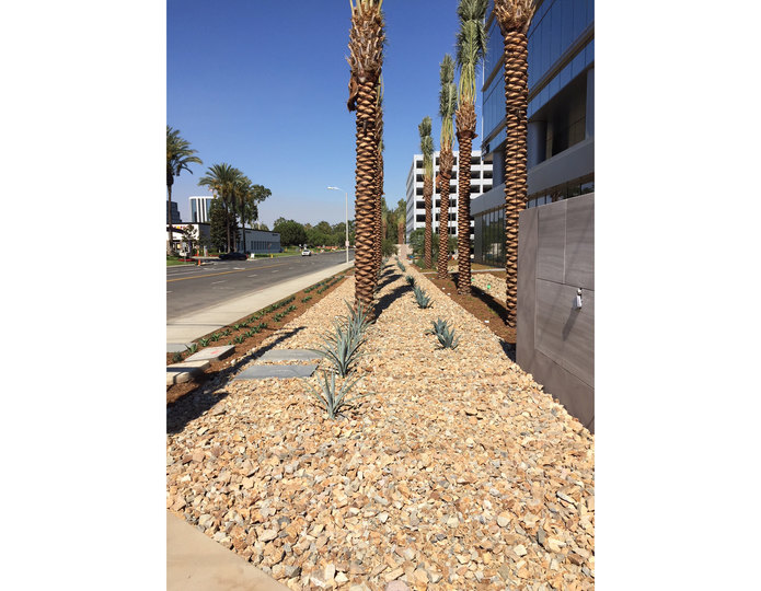 Miner's Gold crushed stone rock in commercial property with mulch and palm trees