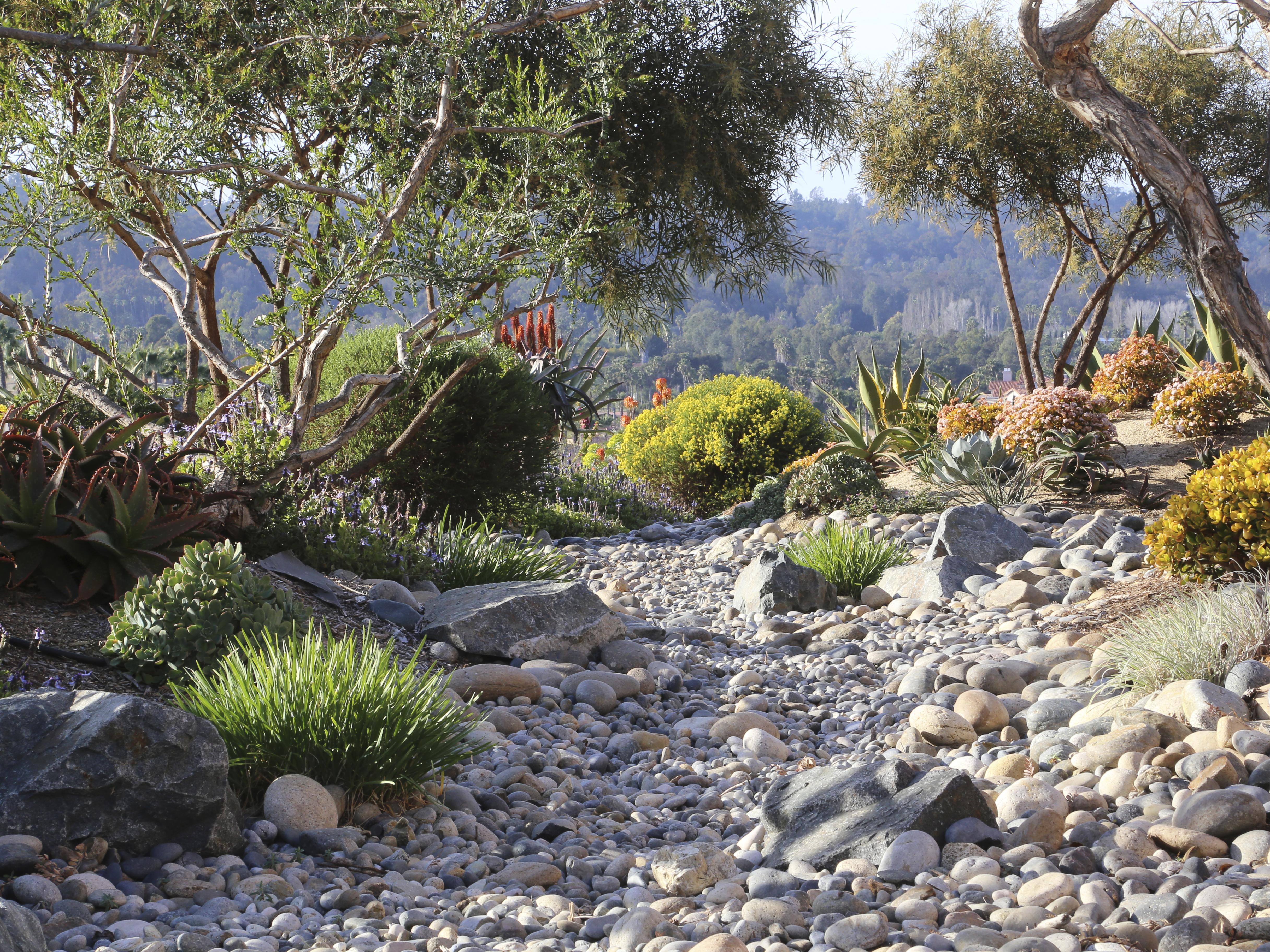 Succulent Garden Debra Lee Baldwin S Expert Advice On Stone