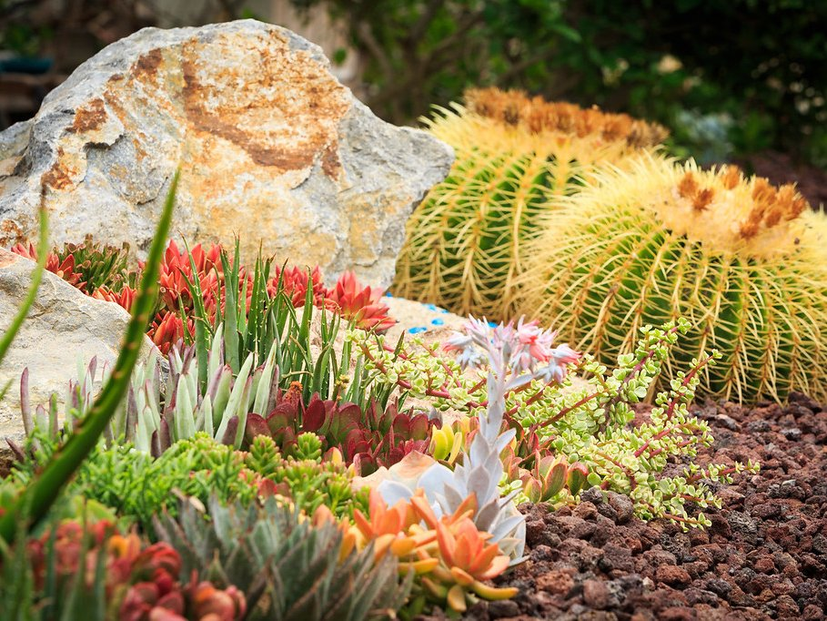 7 Best Rocks For Your Succulent Garden Southwest Boulder Stone